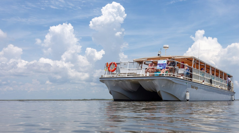 Home - Amelia River Cruises : Amelia River Cruises